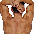 the back of a body builder